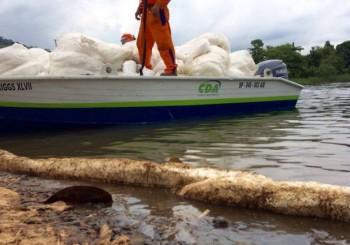 Vazamento no Rio Cubatão não provocou danos ambientais